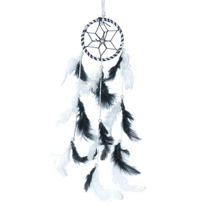 Small Dream Catcher Hanging for Cars And Rooms
