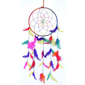 Multi Color Dream Catcher Wall Hangings (8 Inch) (Large)