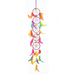 Dream Catcher 5 Rings Long Wall Hanging (Multi Color)