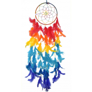 Ashvah Natural Feathers Multi Color Dream Catcher Wall Hanging (6 Inch) for Positive Energy and Protection - for Home/Office/Shop/Rooms (Multicolor) (Pack of 1)
